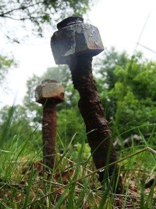 Pair of steampunk mushrooms
